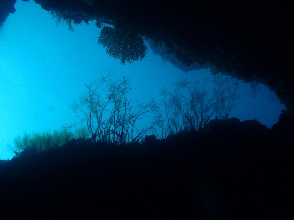 6.隙間からブルー